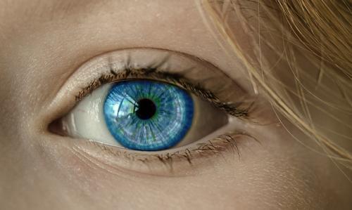 az emberi látás fejlesztése)