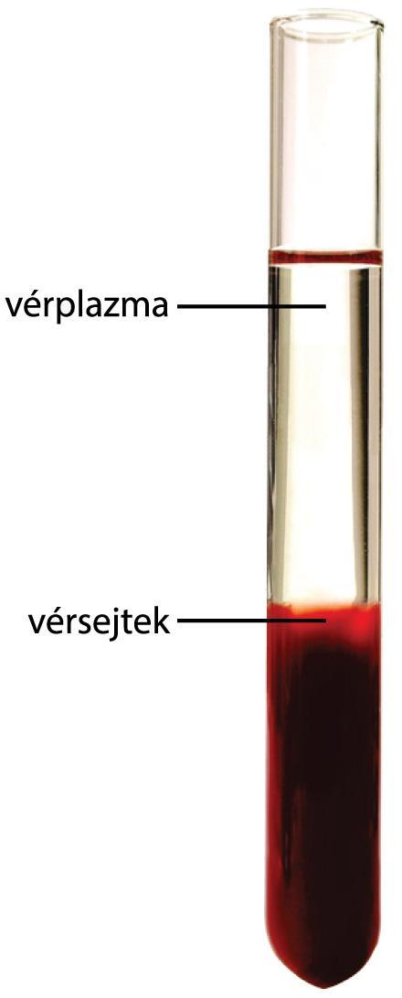A vér prosztatizálása a vérben