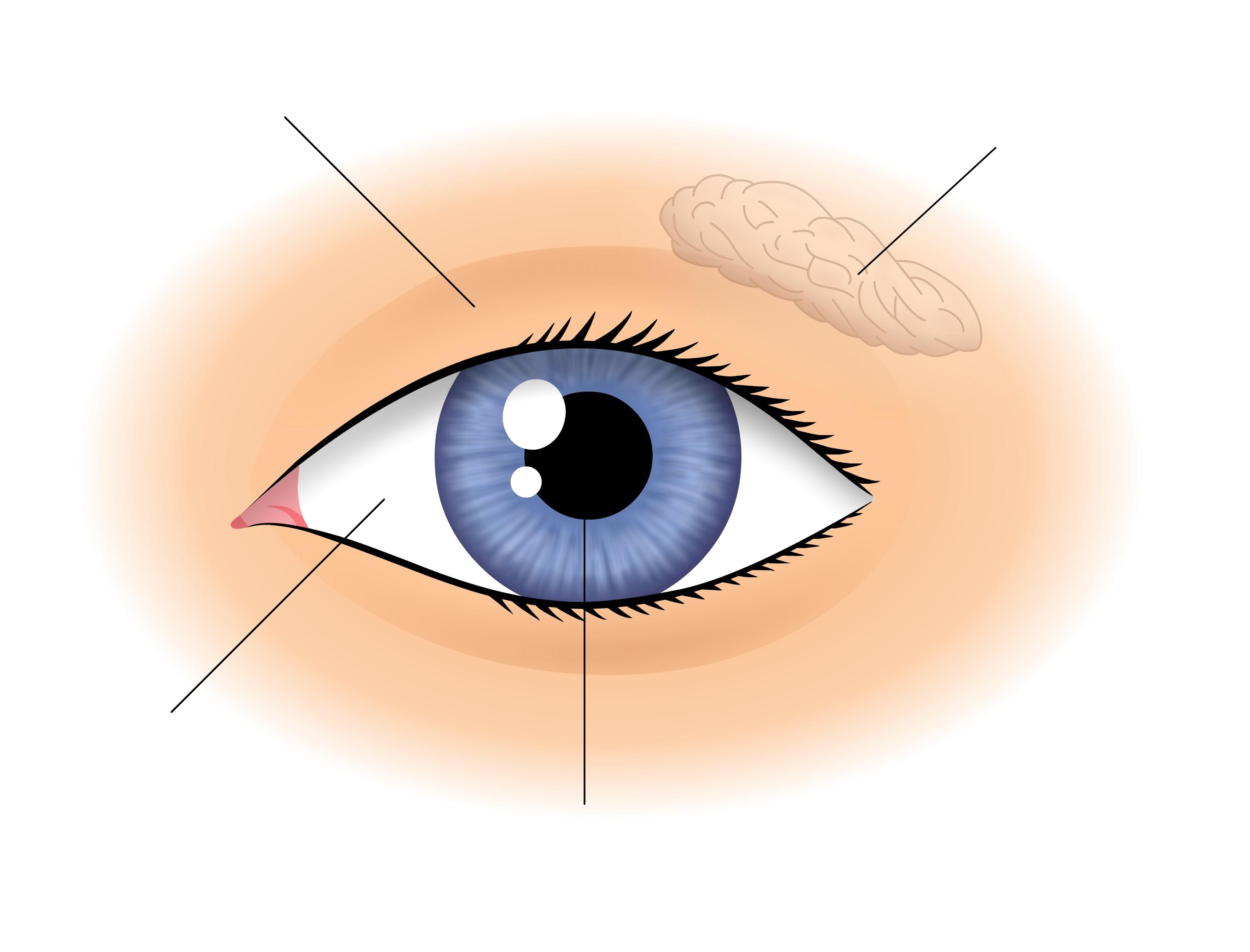 Az érzékelés befolyásolja-e a látást a Véda rövidlátása